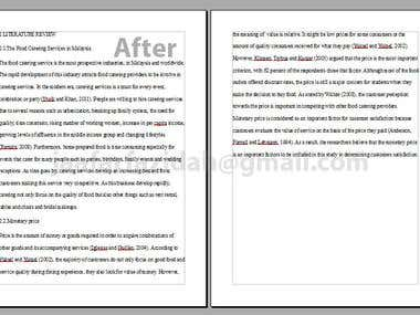 Literature Review Editing