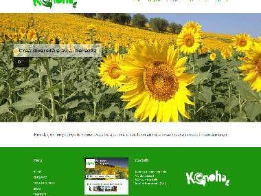 Create website for a farm