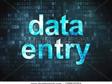 Data Entry & Data Convert