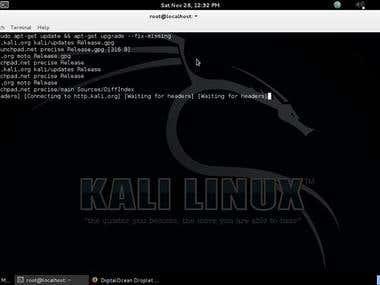 Kali Linux system admin for pen test