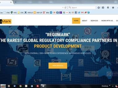 Website Development for Regulations Business