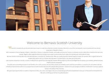 University Website -- http://bernavis.com