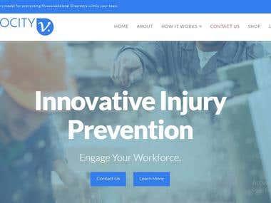 VIMOCITY.com - Responsive Web Portal and Custom CMS