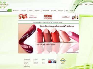 Providing website Development