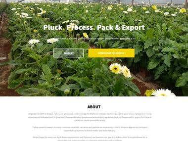 http://www.export-flowers.com/