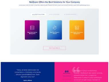 netzoom.com initial concepts