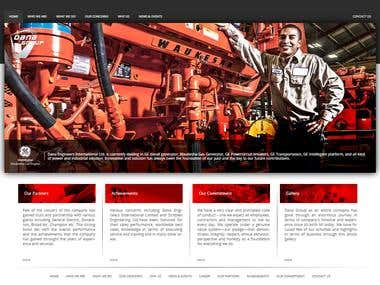 Dana group website development