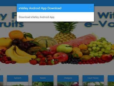 eValley: A web grocery store