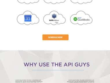 The API Guys