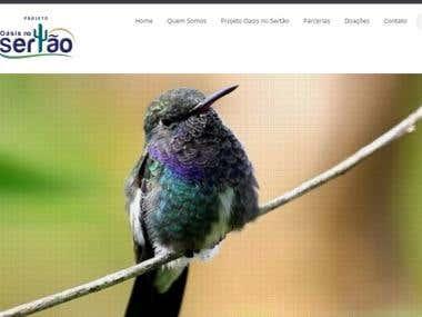 Website do Projeto Oasis no Sertão