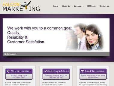 A website designed for Falcon Marketing