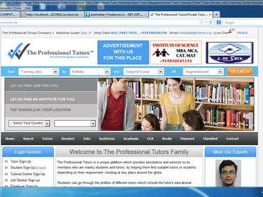 The Professional Tutors