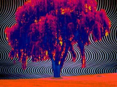 IMAGE: Be Love Tree