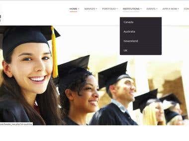 Megamind International Website