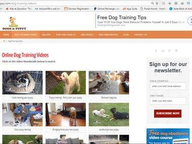 www.dogsandpuppy.com