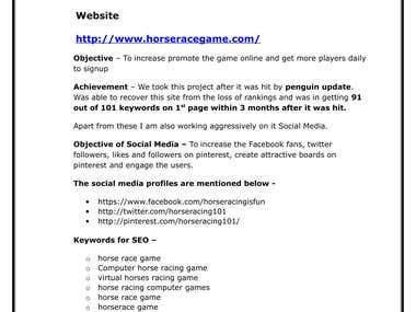 Portfolio of Online Marketing of Horse Race Game