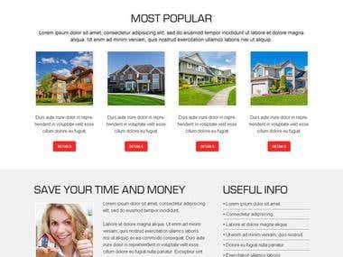 Premium Wordpress Theme Customization