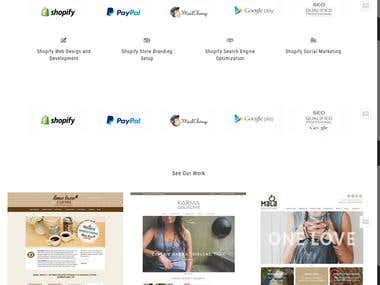 The Shopify Pros - Shopify Design Agency Business Website