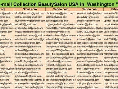 Data collection of Email Collection Comapny  in USA