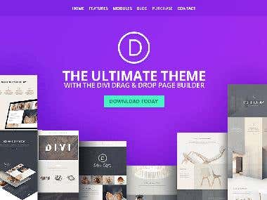 DO SOME CHANGES IN WORDPRESS DIVI THEMES
