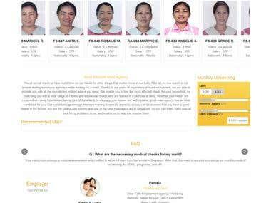 Employment Service website in wordpress