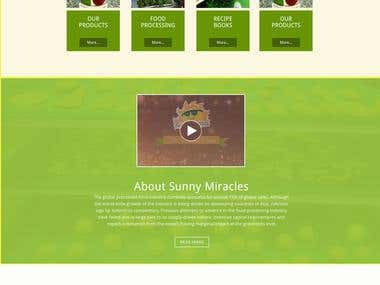 sunny-miracles website design and Development.