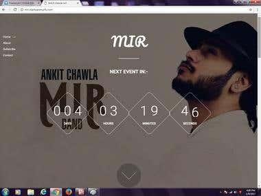 Mir-The artist