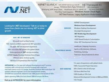 Dot NET Developemnt