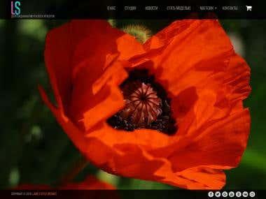 lsdistrict.com.ua website