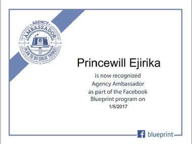 Facebook Agency Ambassador Certificate