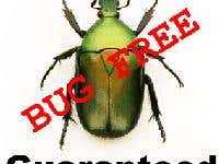 Bug free software