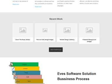 eves software solution