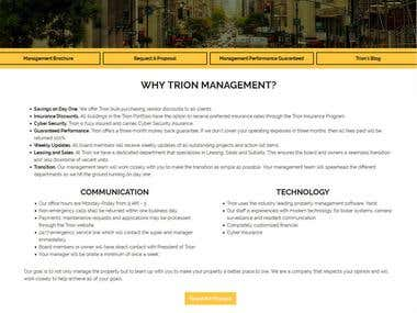 Website for Trion Management