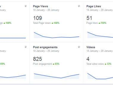 15th days age Facebook Page Insight