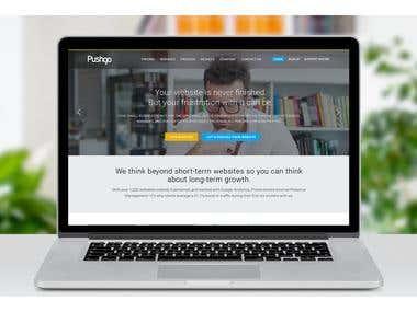 Pushgo wordpress website