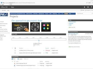 Office 365 SharePoint - Branding & Portal Setup