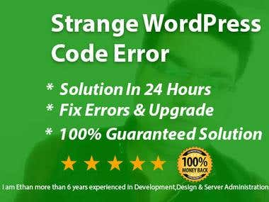 Strange WordPress Code Errors Services