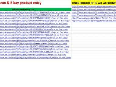 Amazon Products Entry.