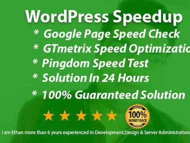 WordPress Speedup Service
