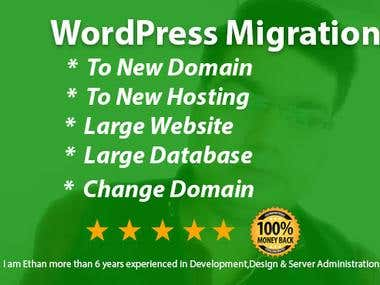 WordPress Website Migration or Backup Services