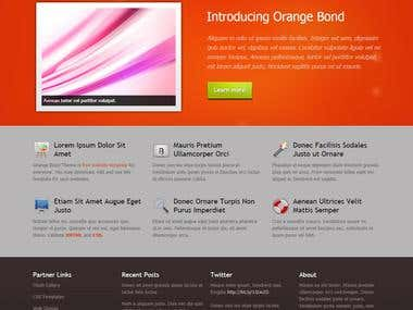 Orange Brand Website Design