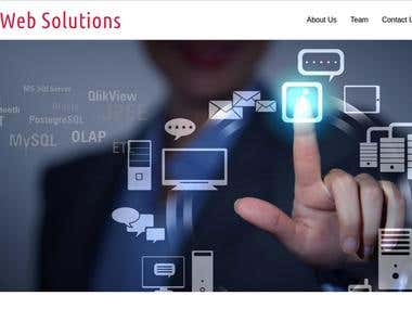 Styler Web Solutions