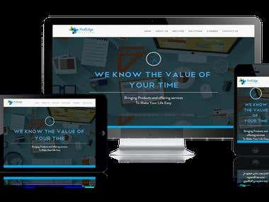 Website ProfEdge Solutions