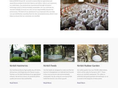 PSD to WordPress http://niribiligroup.com