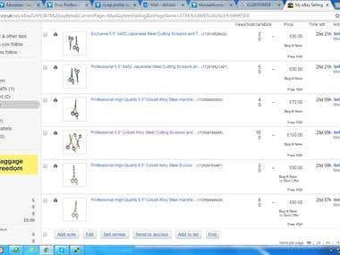 E-Bay Product Listing