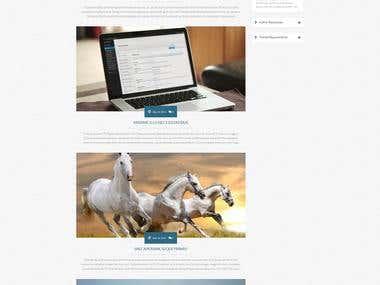 Responsive WordPress html5 blog