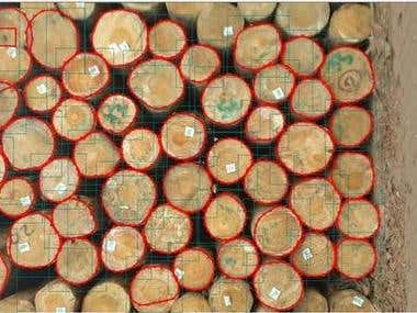 Wood Counting