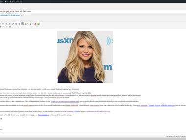 WordPress Assessment