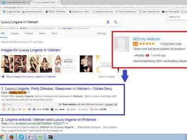 Top 1st Ranking - Google.com.vn