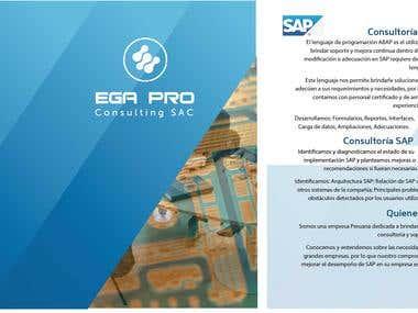 EGA Consulting